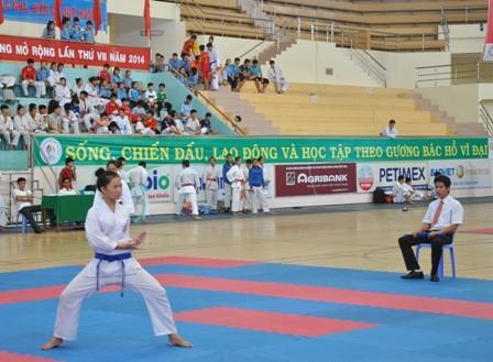Mở lớp bồi dưỡng hướng dẫn viên và trọng tài môn Karate, Vovinam, Taekwondo, Võ cổ truyền tỉnh Đồng Tháp - Ảnh 1.