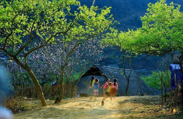 Phê duyệt quy hoạch chung xây dựng Khu du lịch quốc gia Mộc Châu đến năm 2030 - Ảnh 1.