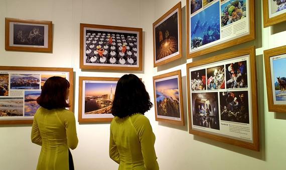 Ngắm những bức ảnh đoạt giải Vàng Festival Nhiếp ảnh trẻ năm 2019 - Ảnh 2.