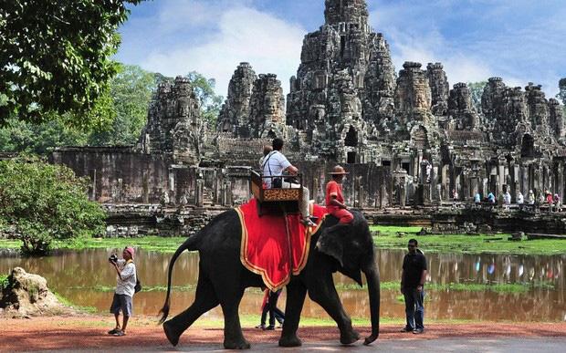 Sau làn sóng phẫn nộ từ dư luận, Campuchia cấm hẳn dịch vụ cưỡi voi ở đền Angkor Wat - Ảnh 1.