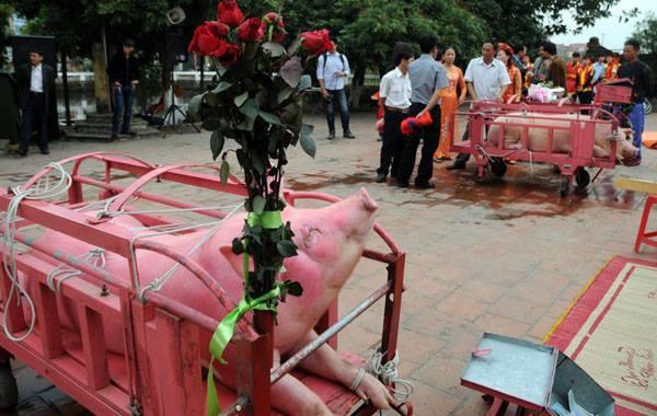 Năm Kỷ Hợi, làng Ném Thượng có bỏ lễ hội chém lợn? - Ảnh 1.