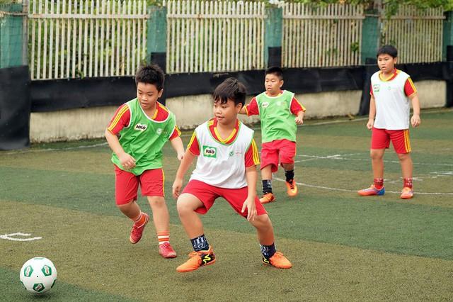 Đồng Tháp: Phát triển thể dục thể thao trong trường học - Ảnh 1.
