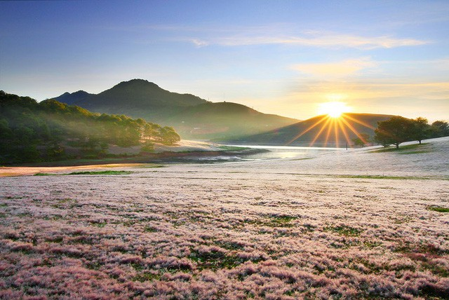 Lâm Đồng: Công bố Quy hoạch tổng thể phát triển Khu du lịch quốc gia Đankia-Suối Vàng - Ảnh 1.