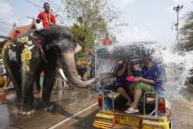 Lễ hội nổi nhất Thái Lan đối mặt nguy cơ bất ngờ - Ảnh 1.