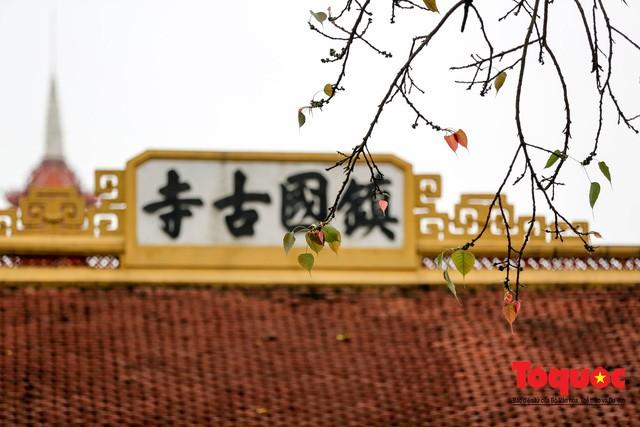 Chùa Trấn Quốc, Việt Nam lọt top những ngôi chùa đẹp nhất thế giới - Ảnh 7.
