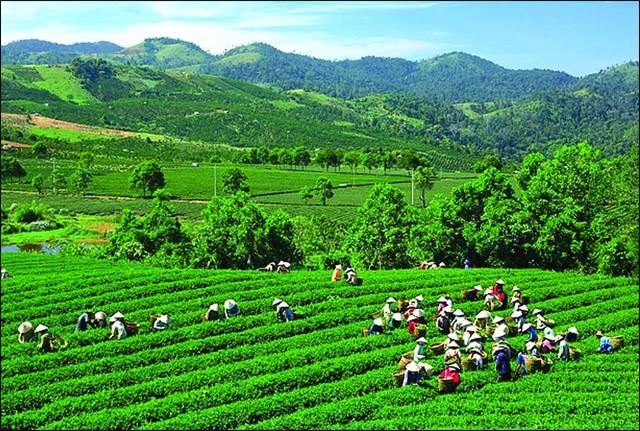 Du lịch Thái Nguyên hướng đến phát triển bền vững - Ảnh 1.