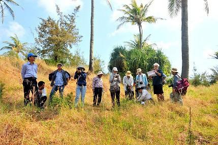 Cắm bảng chỉ dẫn 4 tuyến du lịch thuộc Công viên địa chất Lý Sơn- Sa Huỳnh - Ảnh 1.
