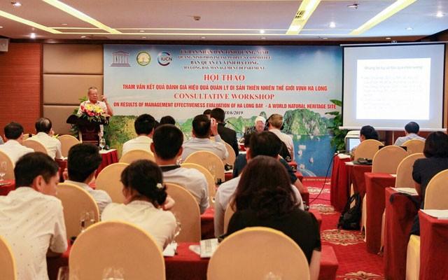 Tham vấn kết quả đánh giá hiệu quả quản lý di sản thiên nhiên thế giới vịnh Hạ Long - Ảnh 1.