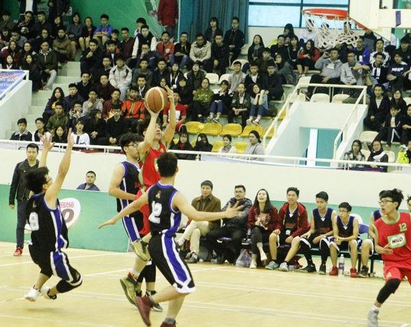 Tổ chức Giải bóng rổ U17, U19 quốc gia tại tỉnh Bình Thuận - Ảnh 1.