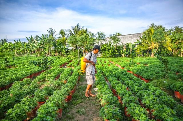 Phát triển nhận thức về du lịch nông thôn thông qua xây dựng mô hình Làng Văn hóa du lịch - Ảnh 1.