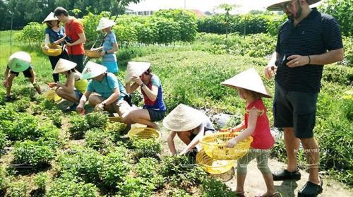 Hội thảo Xu hướng phát triển của du lịch thế giới và tác động đối với du lịch Việt Nam  - Ảnh 3.