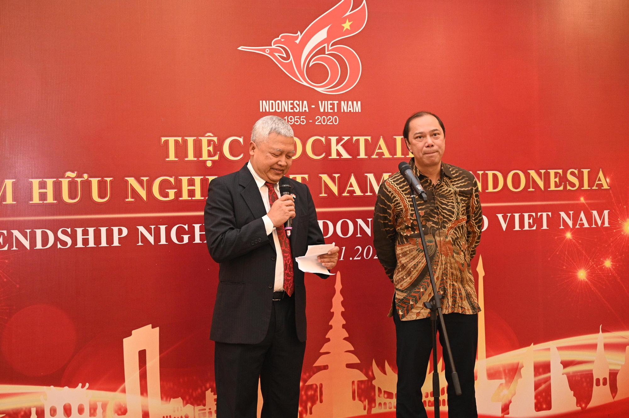 Đêm Hữu nghị Việt Nam - Indonesia - Ảnh 7.