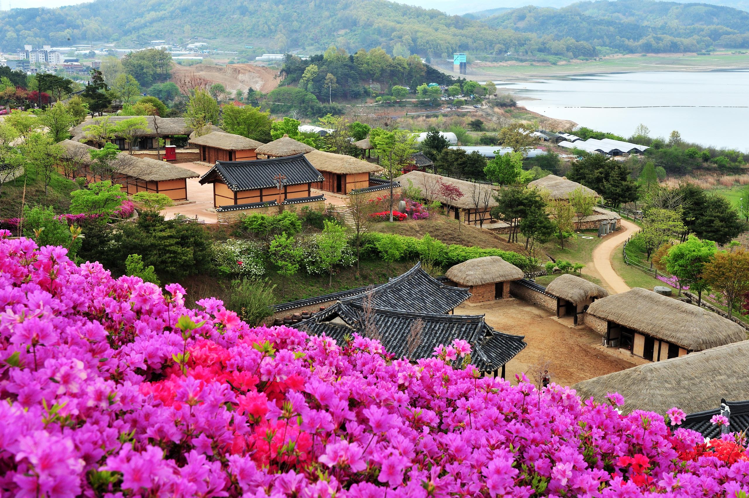 Hàn Quốc tăng cường quảng bá du lịch chuẩn bị mở cửa du lịch quốc tế  - Ảnh 2.