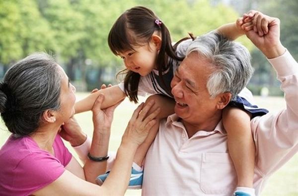 Góp ý Dự thảo Chiến lược Phát triển văn hóa đến năm 2030: Giáo dục truyền thống gia đình, dòng họ qua gia phả phải được quan tâm đúng mức - Ảnh 2.