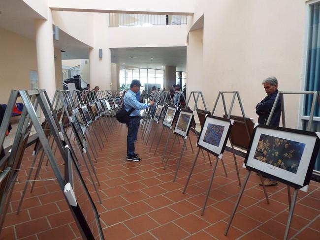 Triển lãm 180 ảnh nghệ thuật miền Đông Nam bộ - Ảnh 1.