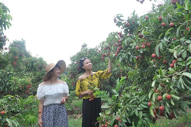 Bắc Giang phê duyệt kế hoạch phát triển du lịch cộng đồng - Ảnh 1.