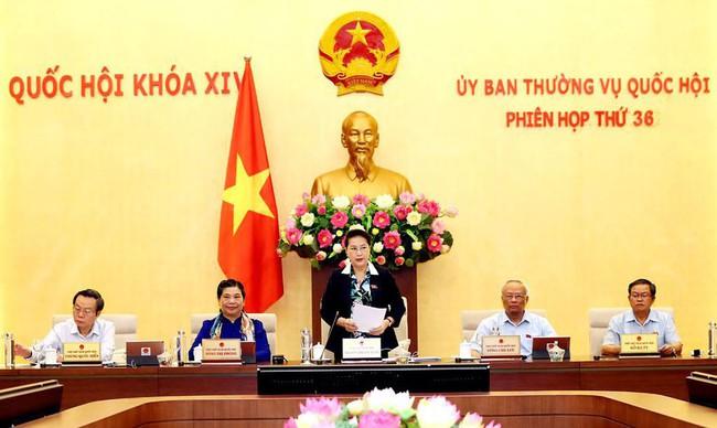 Ủy ban Thường vụ Quốc hội thống nhất chủ trương không xếp hạng thư viện - Ảnh 1.