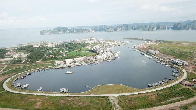 Quảng Ninh chỉ đạo rà soát lại toàn bộ các quy hoạch tại đảo Tuần Châu - Ảnh 1.