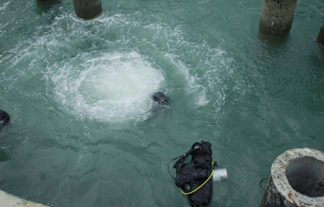 Kết quả khai quật tàu cổ đắm vùng biển Dung Quất - Ảnh 3.