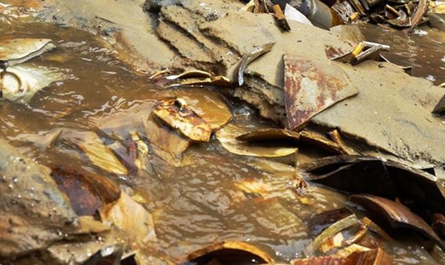 Kết quả khai quật tàu cổ đắm vùng biển Dung Quất - Ảnh 4.
