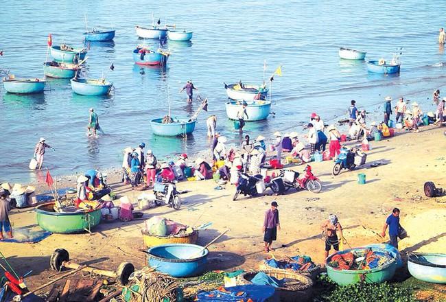 Thực hiện Ký sự Du lịch biển và văn hóa ẩm thực Việt Nam - Ảnh 1.