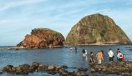 Công bố Chiến lược Marketing du lịch tỉnh Phú Yên