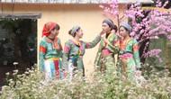 Yêu cầu kiểm tra thông tin về Tết cổ truyền của đồng bào dân tộc H'Mông chuyển sang ăn Tết Nguyên đán như cả nước
