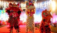 Tây Ninh: Tổ chức các hoạt động văn hóa, văn nghệ đón Tết Nguyên đán Kỷ Hợi năm 2019