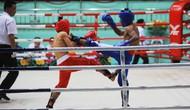 Tiền Giang đăng cai giải vô địch Cúp các Câu lạc bộ toàn quốc môn Kickboxing 2019