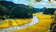 Đa dạng các hoạt động tại Năm Du lịch Quốc gia 2020 – Hoa Lư, Ninh Bình