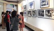 Bảo tàng Lịch sử quốc gia sẽ tổ chức 7 trưng bày chuyên đề năm 2020