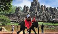 Campuchia cấm dịch vụ cưỡi voi ở đền Angkor Wat