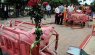 Năm Kỷ Hợi, làng Ném Thượng có bỏ lễ hội chém lợn?