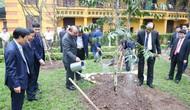 Đầu xuân Kỷ Hợi 2019, Thủ tướng dâng hương và trồng cây lưu niệm tại Khu di tích Chủ tịch Hồ Chí Minh tại Phủ Chủ tịch