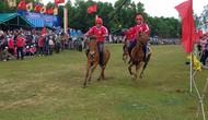 Hội đua ngựa truyền thống Gò Thì Thùng thu hút hàng vạn du khách