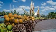 Công bố đề án lễ hội dừa Bến Tre 2019 với quy mô cấp quốc gia