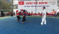 Giải vô địch võ thuật tỉnh Bắc Giang 2019