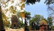 Trả lời kiến nghị của cử tri tỉnh Đắk Lắk về việc hỗ trợ kinh phí duy tu, bảo dưỡng Tháp Chăm Yang Prong