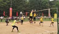 Phú Thọ: Khai mạc Giải thi đấu các môn thể thao quần chúng