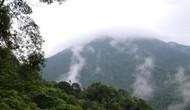 Thừa Thiên - Huế: Phát triển Bạch Mã thành trung tâm du lịch sinh thái đẳng cấp