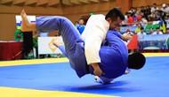 Tổ chức Giải vô địch Judo toàn quốc năm 2019 tại thành phố Đà Nẵng