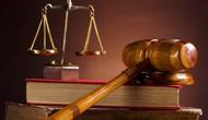 Dự án Luật Thư viện được đưa ra Quốc hội thảo luận