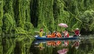 13 tỉnh tham dự Liên hoan ảnh nghệ thuật Khu vực Đồng bằng sông Cửu Long lần thứ 34 năm 2019