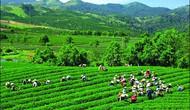 Du lịch Thái Nguyên hướng đến phát triển bền vững