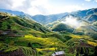 Lào Cai khẳng định vị trí số 1 trên bản đồ du lịch Tây Bắc