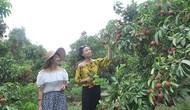 Bắc Giang phê duyệt kế hoạch phát triển du lịch cộng đồng