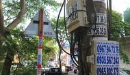 Thừa Thiên Huế: Vi phạm quy định về quảng cáo, rao vặt có thể bị phạt tới 100 triệu đồng