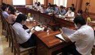 Quảng Nam: Chính quyền và cộng đồng doanh nghiệp du lịch nỗ lực xây dựng Hội An trở thành điểm đến xanh