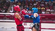 Ngành TDTT hướng tới tổ chức thí điểm một số giải thể thao theo hình thức khép kín, đảm bảo tuyệt đối an toàn phòng, chống dịch