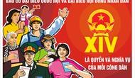 6 bước cử tri phải làm khi đi bầu cử đại biểu Quốc hội khóa XV và đại biểu HĐND là gì?